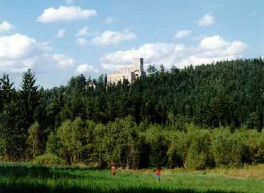 The Landstejn castle amidst the woods